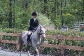 riding lessons in Northern Virginia