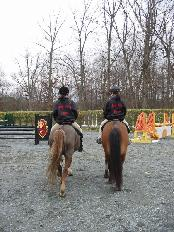 horseback riding lessons in NoVA